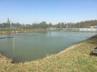 пруды с рыбой в Московской области